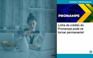 Linha De Credito Do Pronampe Pode Se Tornar Permanente Organização Contábil Lawini - Contabilidade em Estrela - RS | ZW Contabilidade