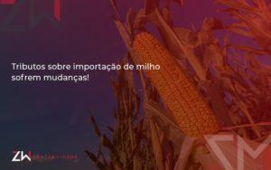 Tributos Sobre Importacao De Milho Sofrem Mudancas Zw Contabilidade - Contabilidade em Estrela - RS | ZW Contabilidade